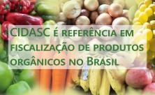 Ascom - Cidasc